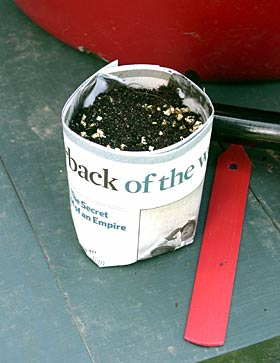 a paper pot made from The Guardian