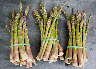 Bundles of English asparagus May 09