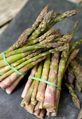 Herefordshire asparagus