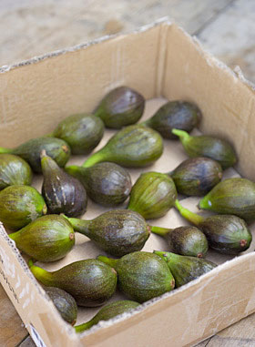 fresh figs in a box