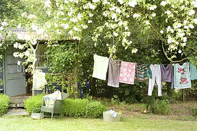 washing line and summer house