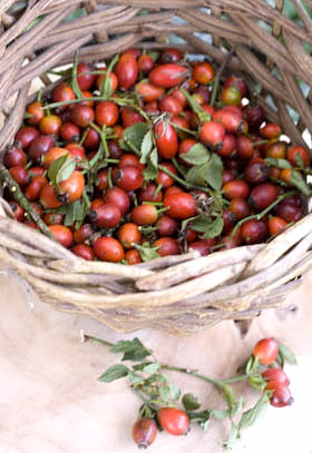 a basket of rosehips