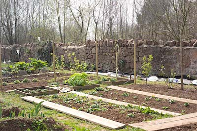the allotment March 2011