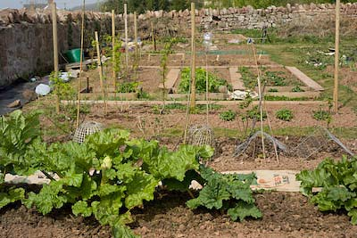 allotment March 2011