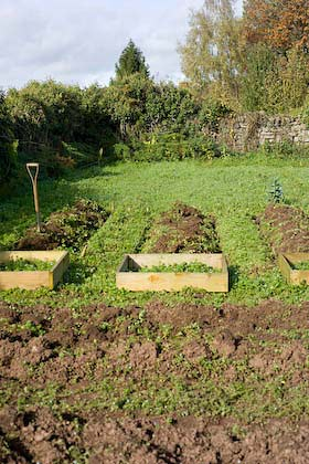 digging the allotment for the first time October 2009