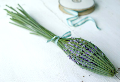making a lavender bottle from fresh lavender
