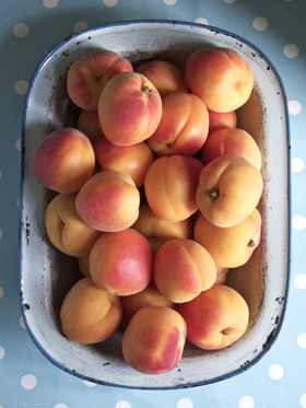 rose blushed apricots from France