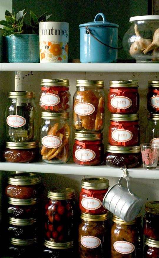 shelves laden with comestibles